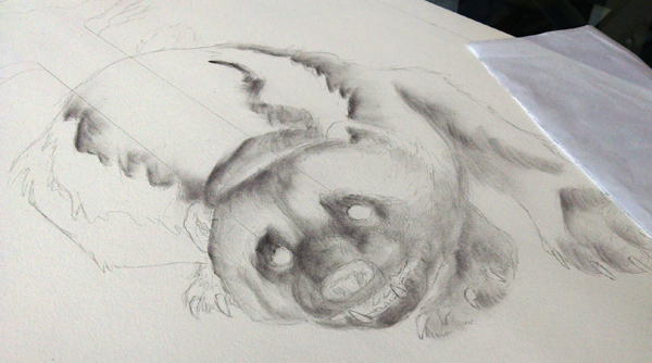 The first pass of powdered charcoal; this is my favorite stage - It feels like sculpting the form out of the paper.