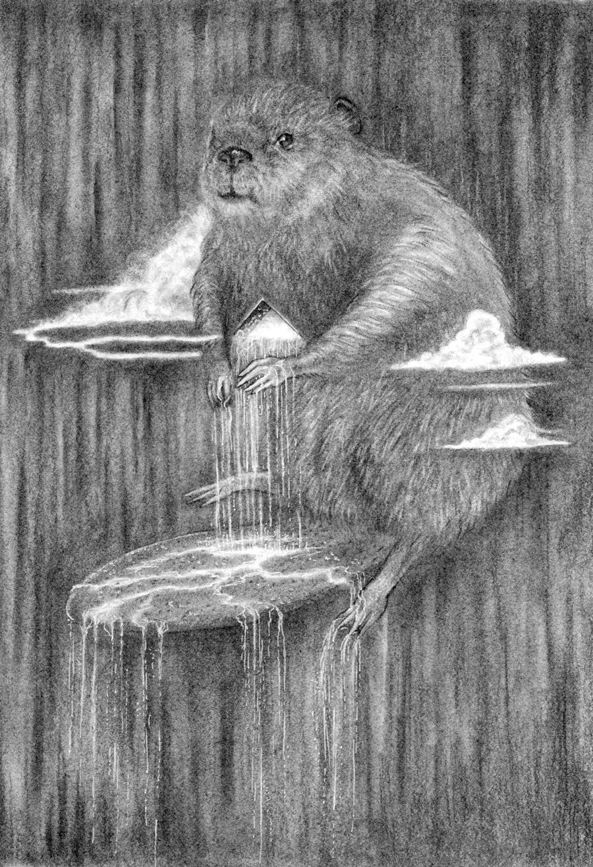 BeaverRain.jpg