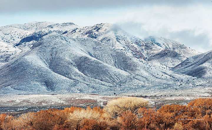 First Snowfall -Bosque del Apache