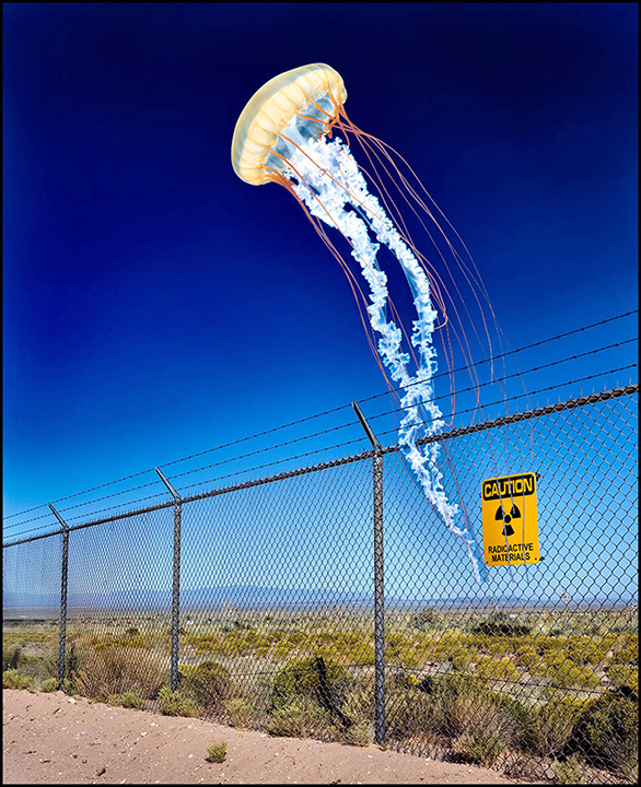 Jellyfish Over Trinity Site