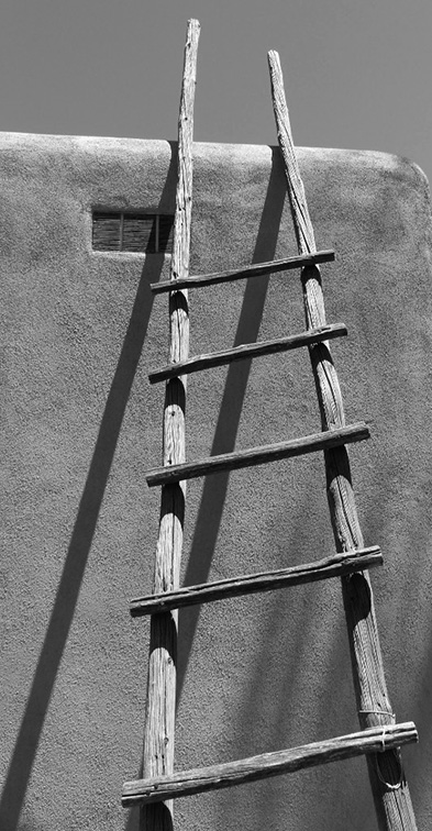 Ladder Shadow