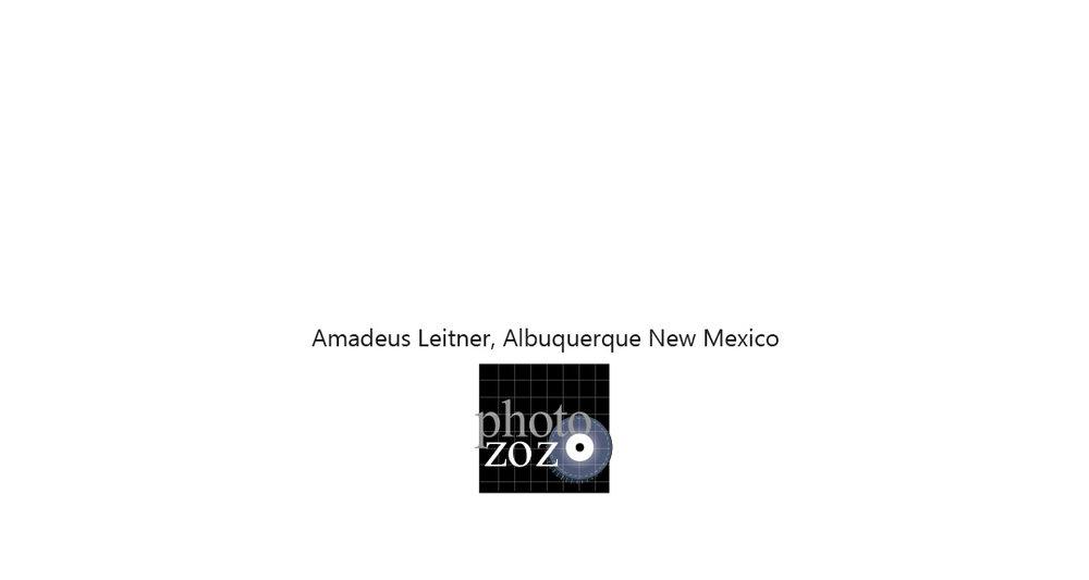 amadeus-title-card.jpg