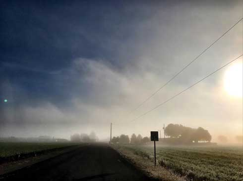 Morning Fog, Tim Stevens