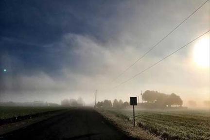 FT_-Morning-Fog.jpg