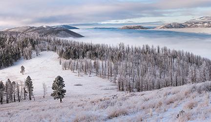 1st Place Seasons, 'Elevation', Andrew Gordon