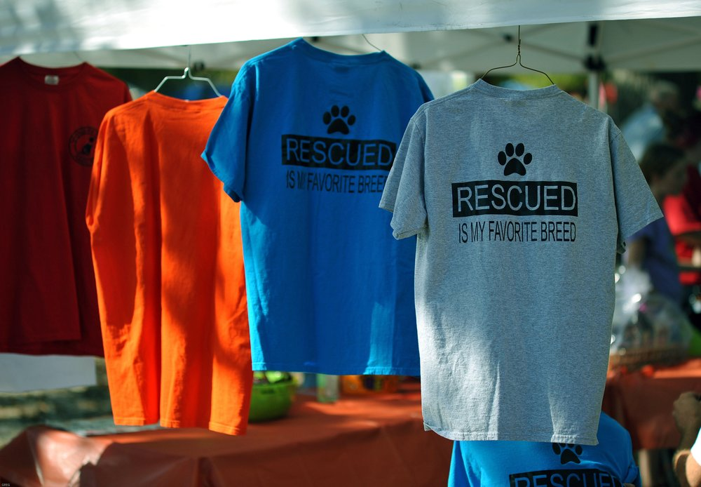 Paws for Causes 9.jpg