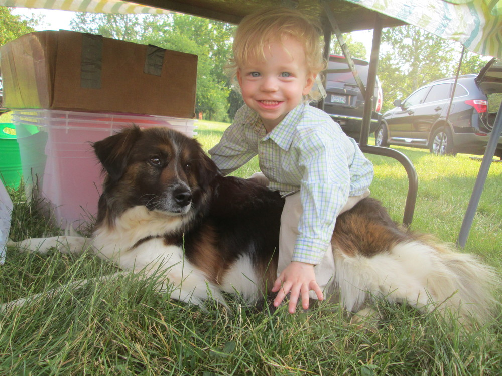 Marty Jr. from M&M Creek Valley Farm loves Jinksee Dog!