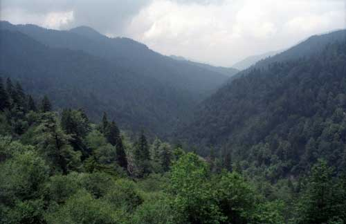 The Great Smoky Mountains in Tennessee