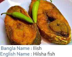 03-Ilish-text.jpg
