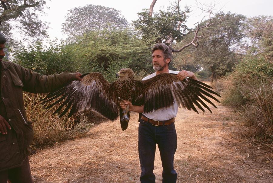 peterraptor.jpg