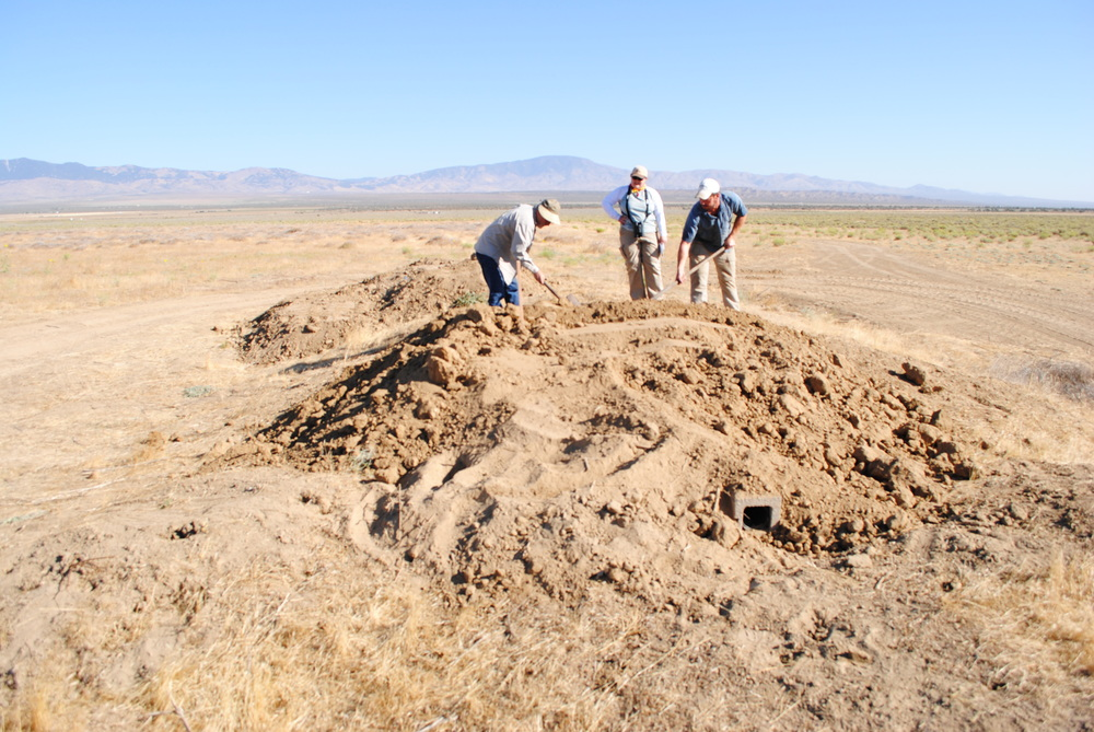 NGRA habitat assessment studies for burrowing owls.