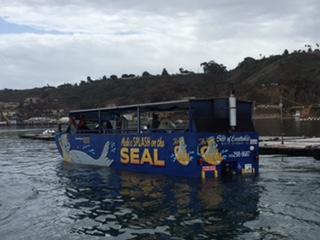 Seal tour 05.jpg
