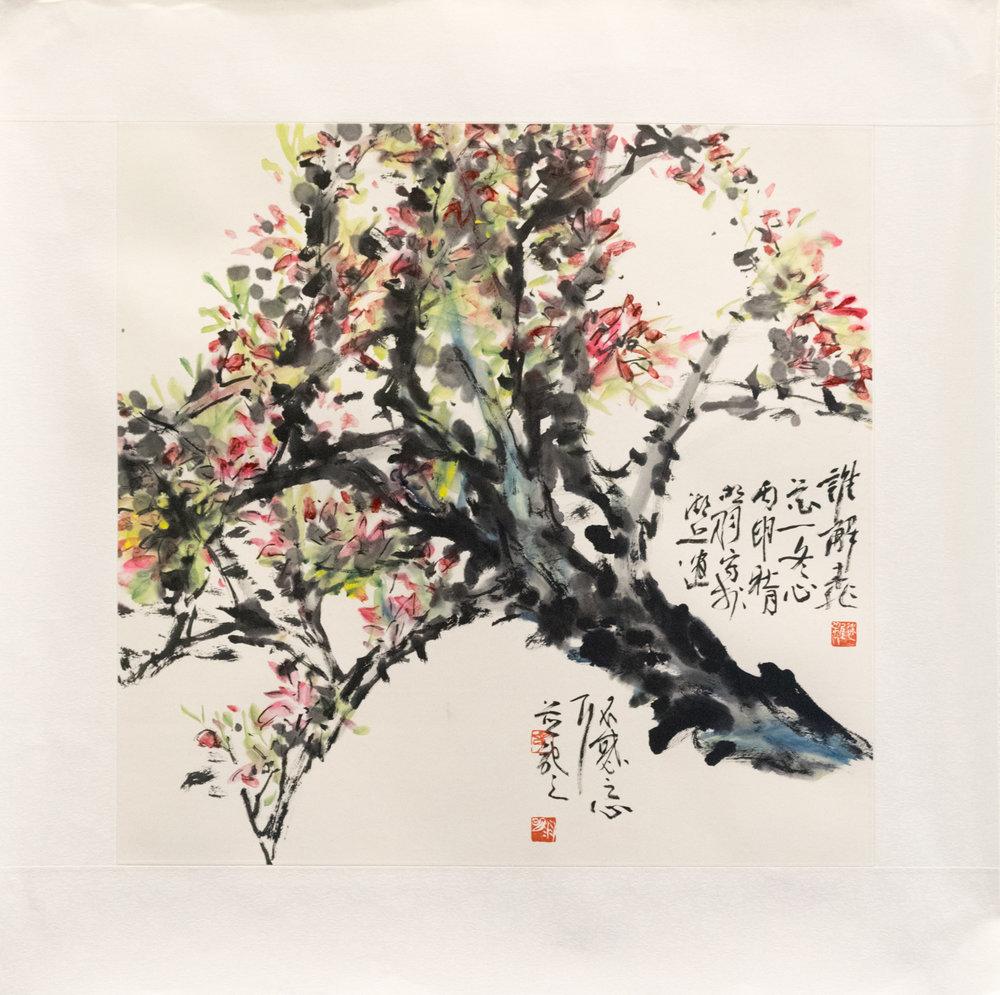 MingYuZhang-2-2.jpg