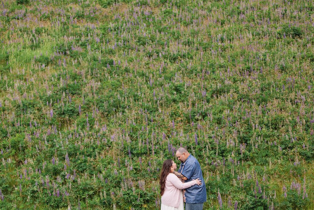romantic couple in front of purple flower field