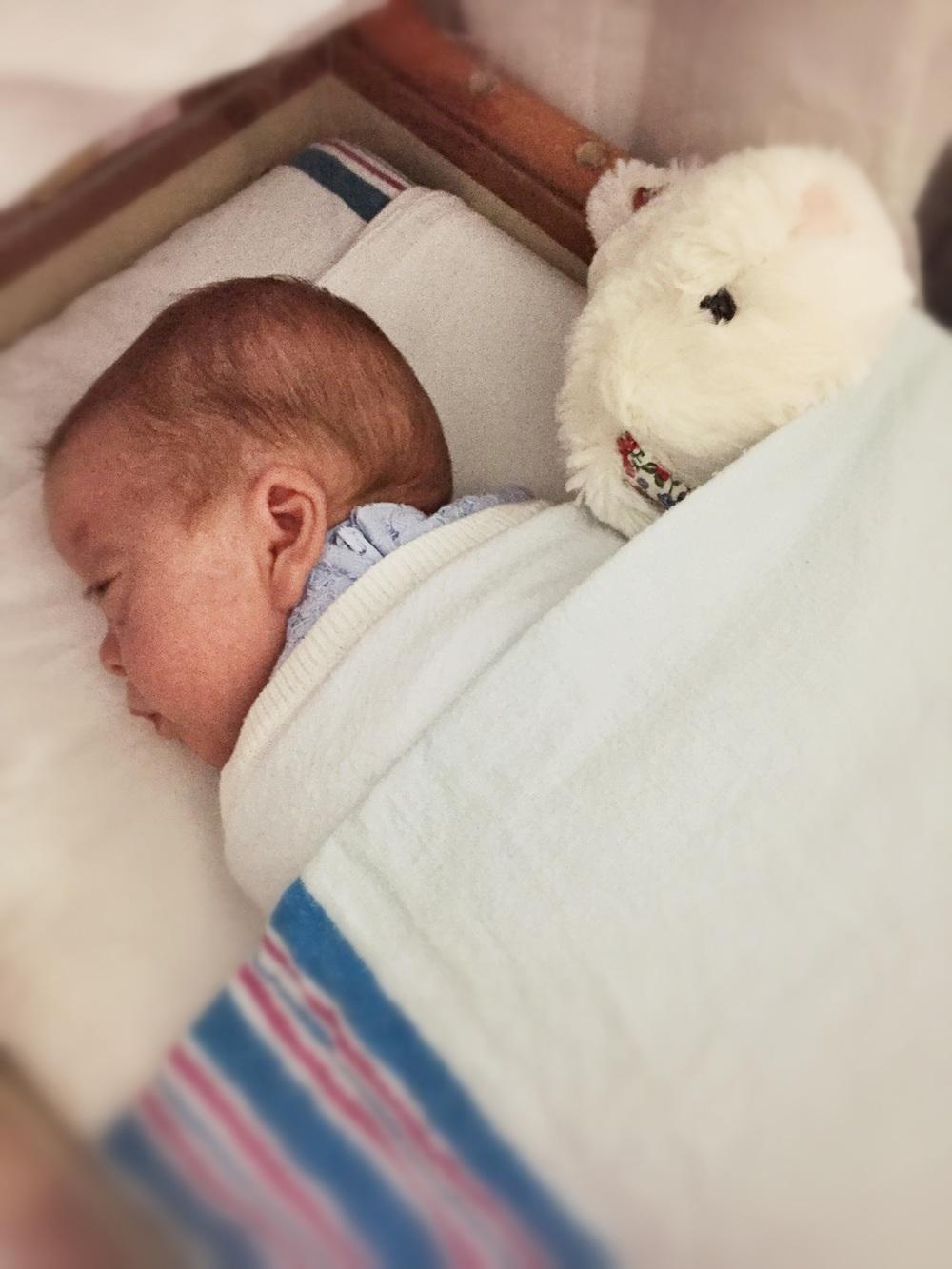 Snuggle up like bunnies!
