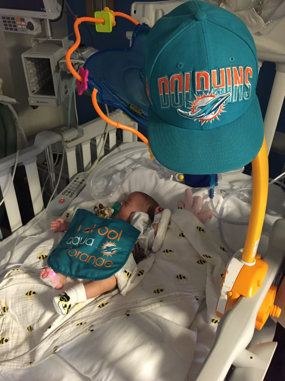 Welcome to Fins Nation!!!!