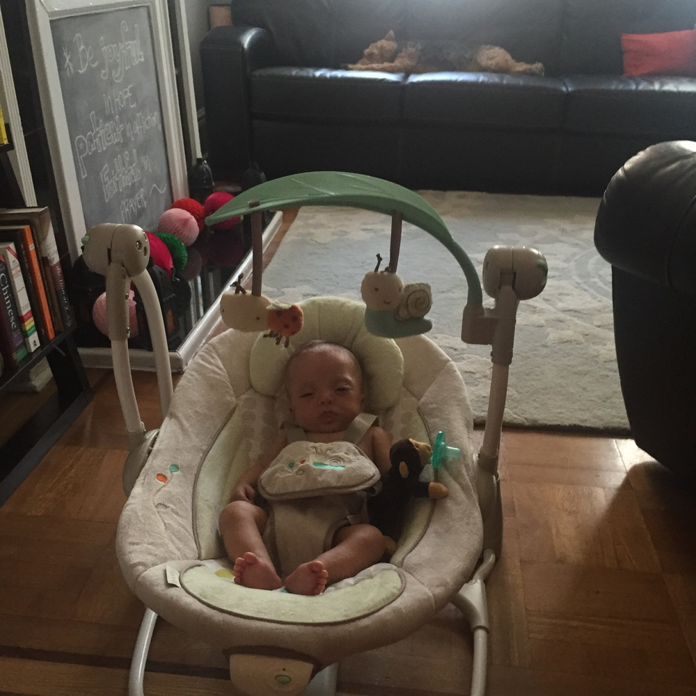 Conked out in her swing, and Bess is out too in the background. Big win!