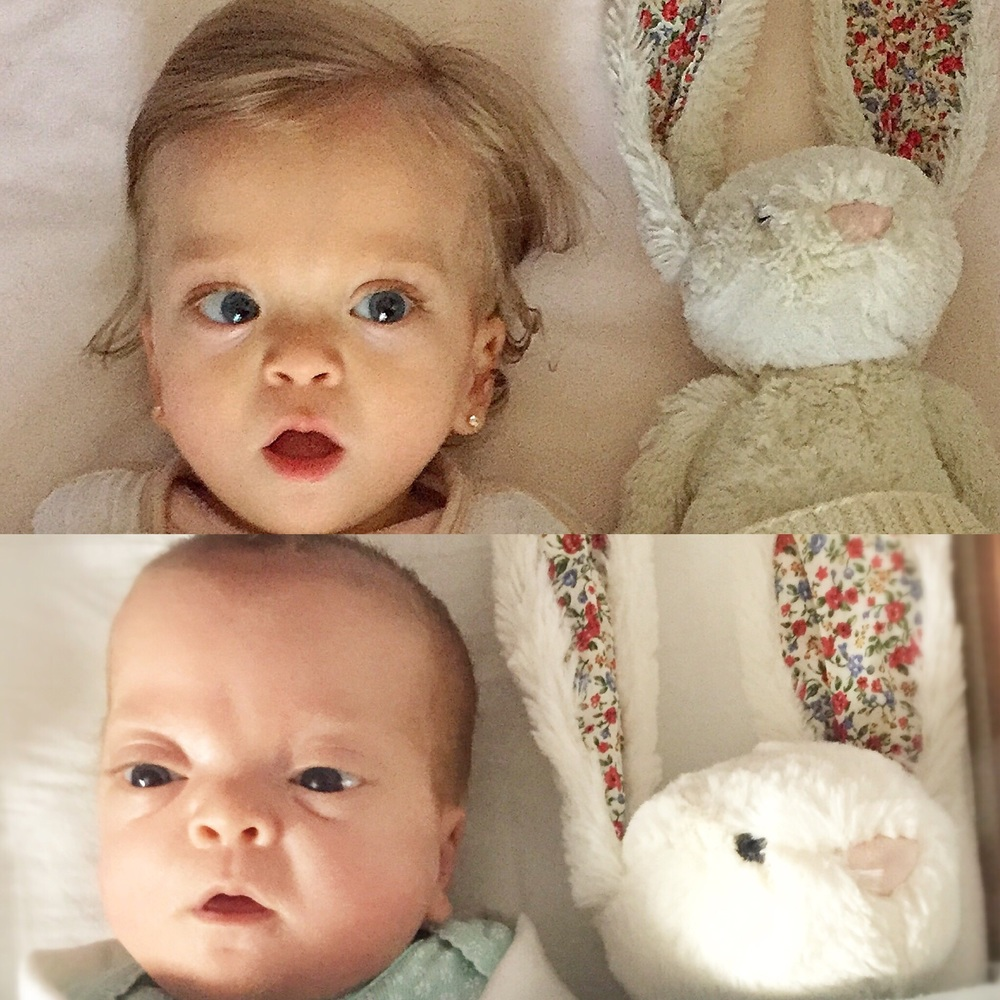 We think this is an adorable Easter Tradition.  Lucie waking up in her crib with Boonches Bonita the Bunny.  The top photo is from this Easter and the bottom photo is from last Easter when she was still in the NICU.