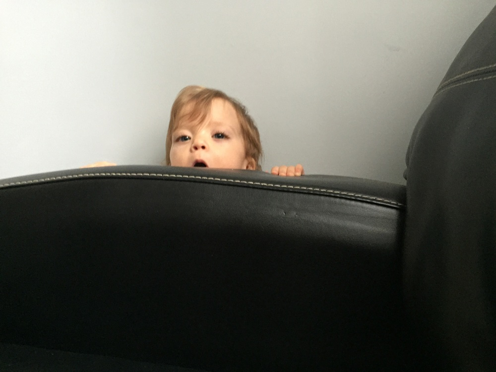 Lucie discovered a new hiding place in the small wedge between the couch and the wall.