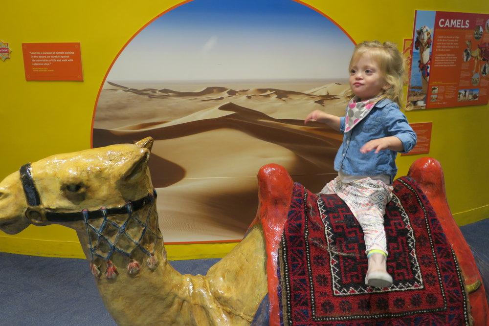 ...then we went through Egypt, of course. You HAVE to ride a camel.