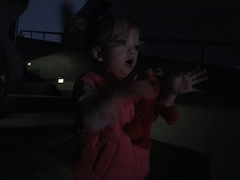 In the zone, Lucie loved watching Sesame Street on stage!