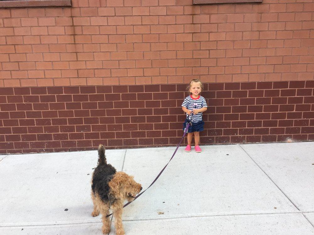 Walking Bess around the block.
