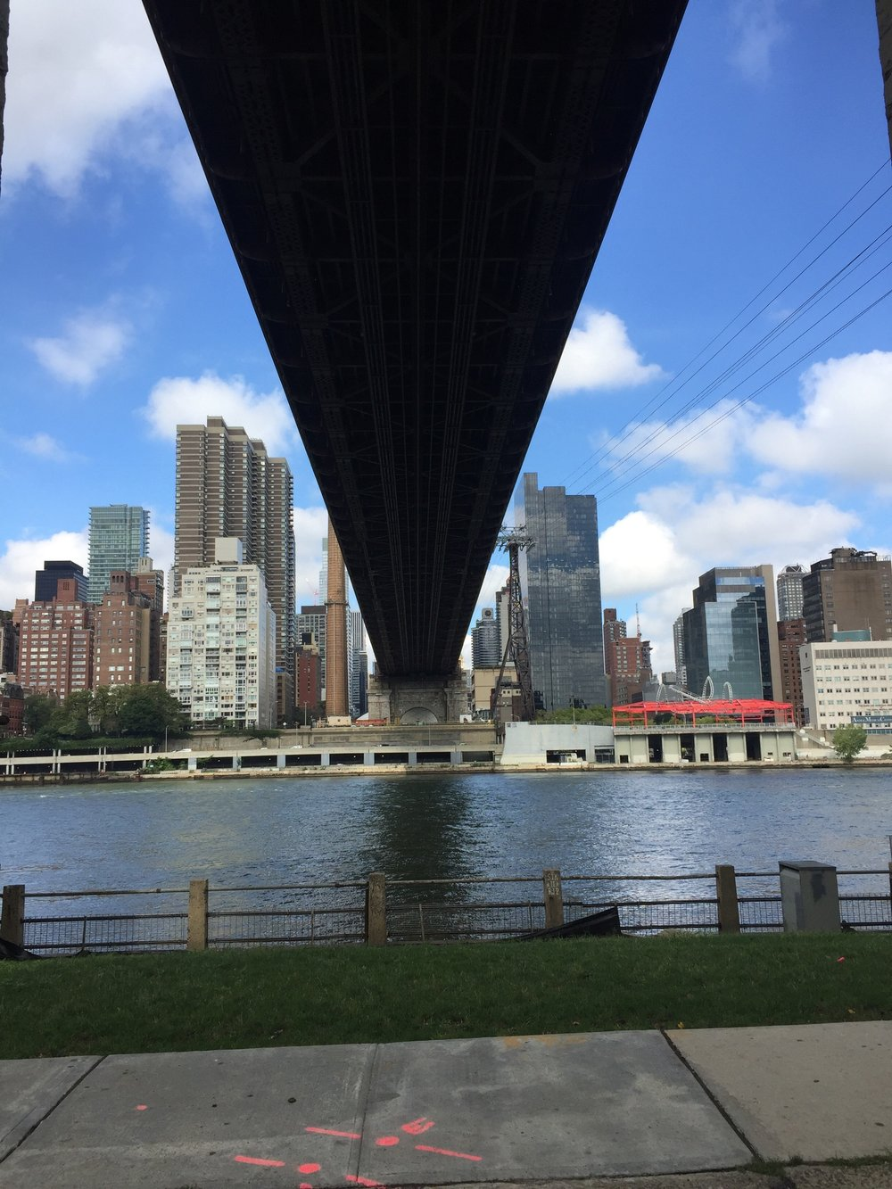 Cool views of our side of town from Roosevelt Island.