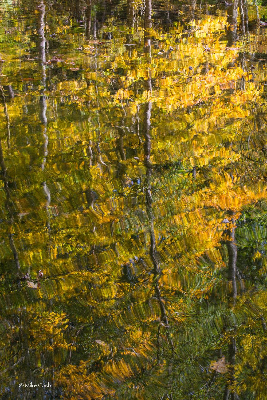 A reflection in Big Walnut Creek