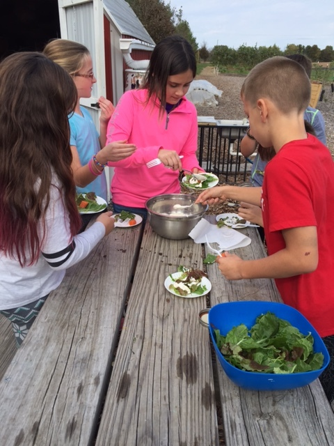 5th Grade Salad