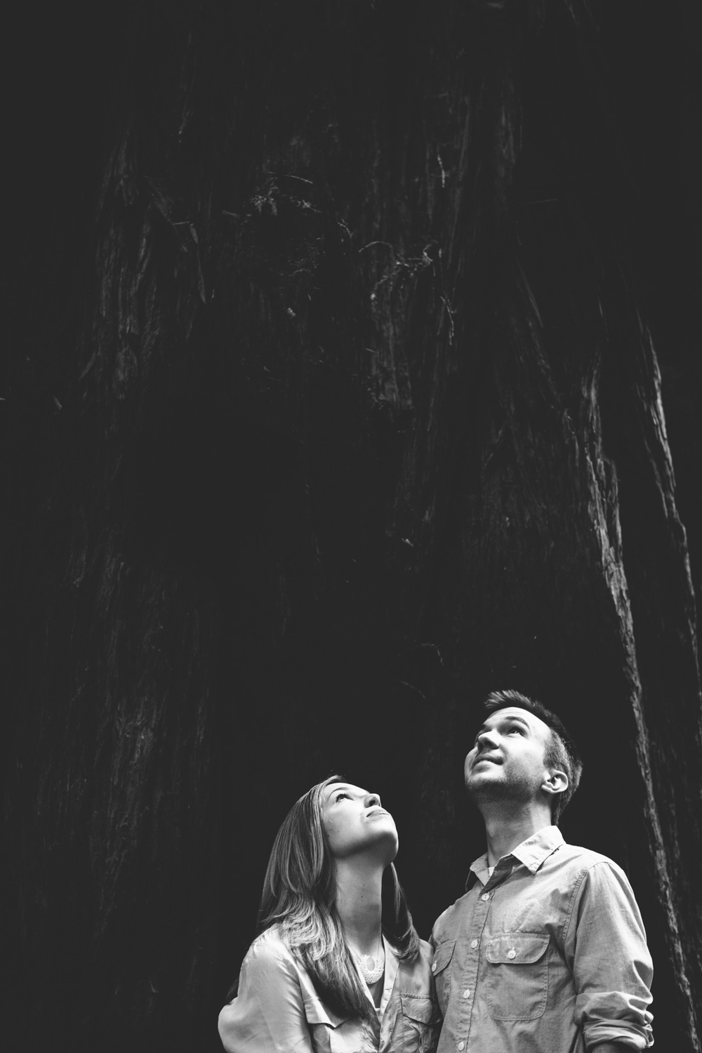 L+S_muir woods_low res-120.jpg