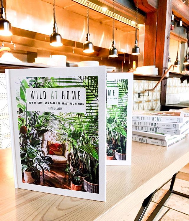 A big congrats to HZer @hiltoncarter on the release of his first book, #WildAtHome! 🌿🍃 Pick up a copy for tips on styling your greenery-filled space and create #plantgoals of your very own.
