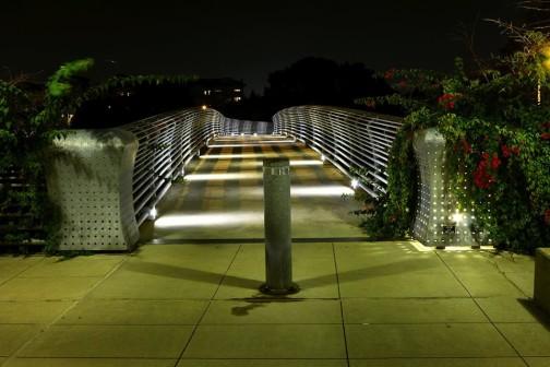 Buffalo Bayou Bridge