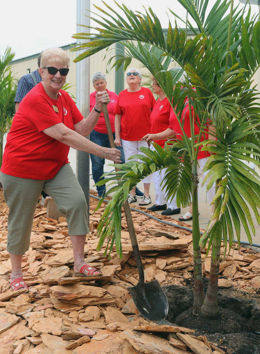 President Doris plants a tree.jpg