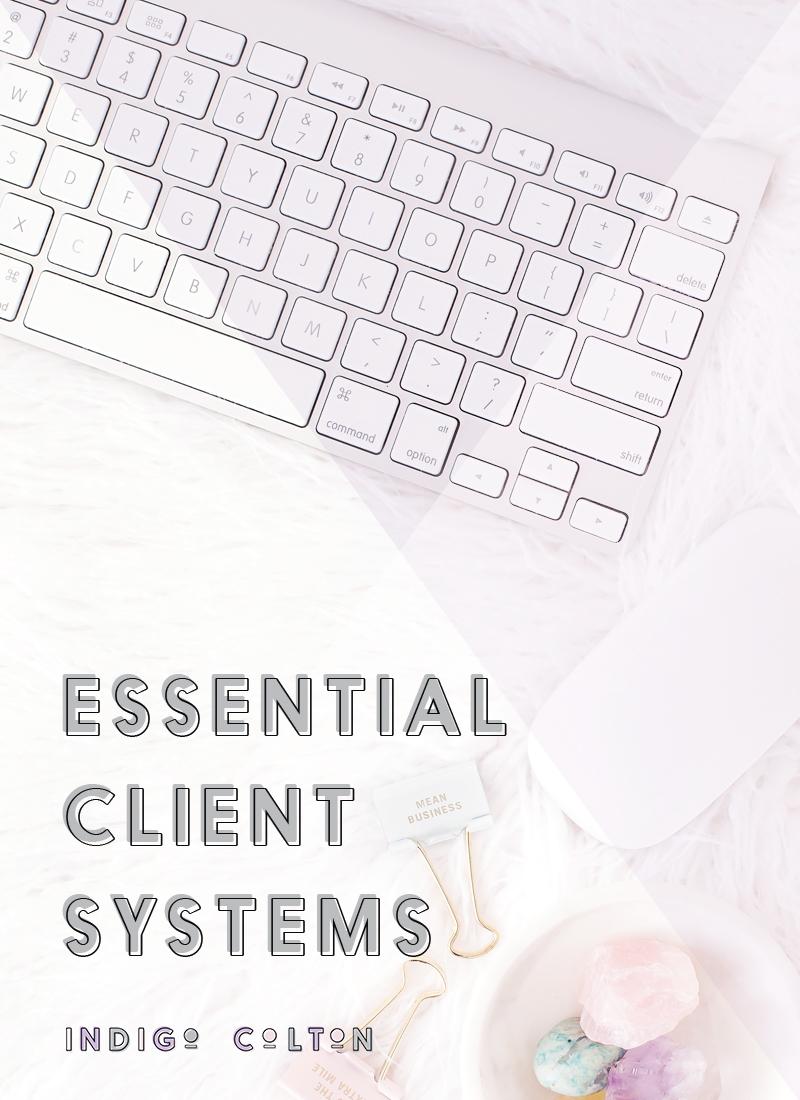 Essential Client Systems Indigo Colton.jpg
