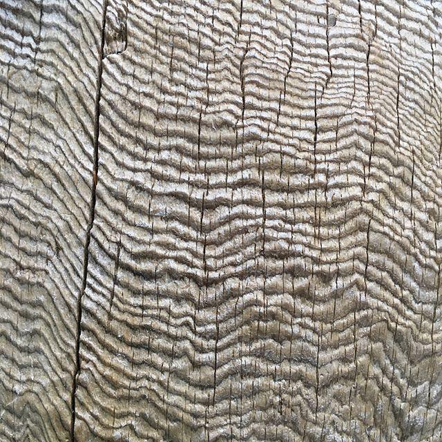 Alaska textures
