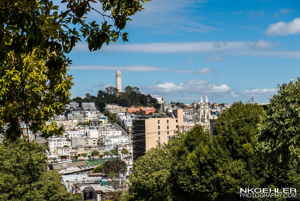 The Coit Tower was our next destination which had a beautiful view from atop it.