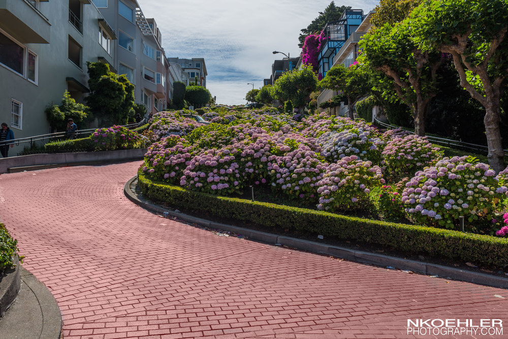 Last stop for the day was Lombard Street.