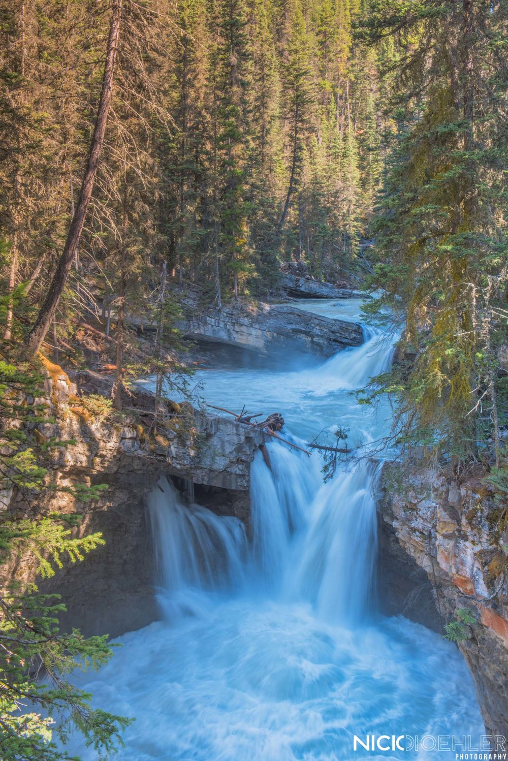 Banff National Park: A waterfall making way through a forest.