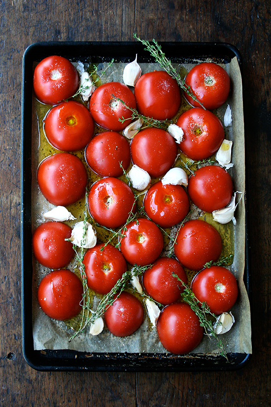 readyfortheoven_tomatoes