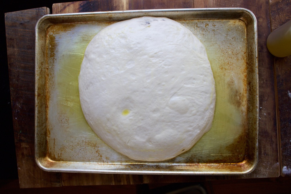 Proofing pizza dough