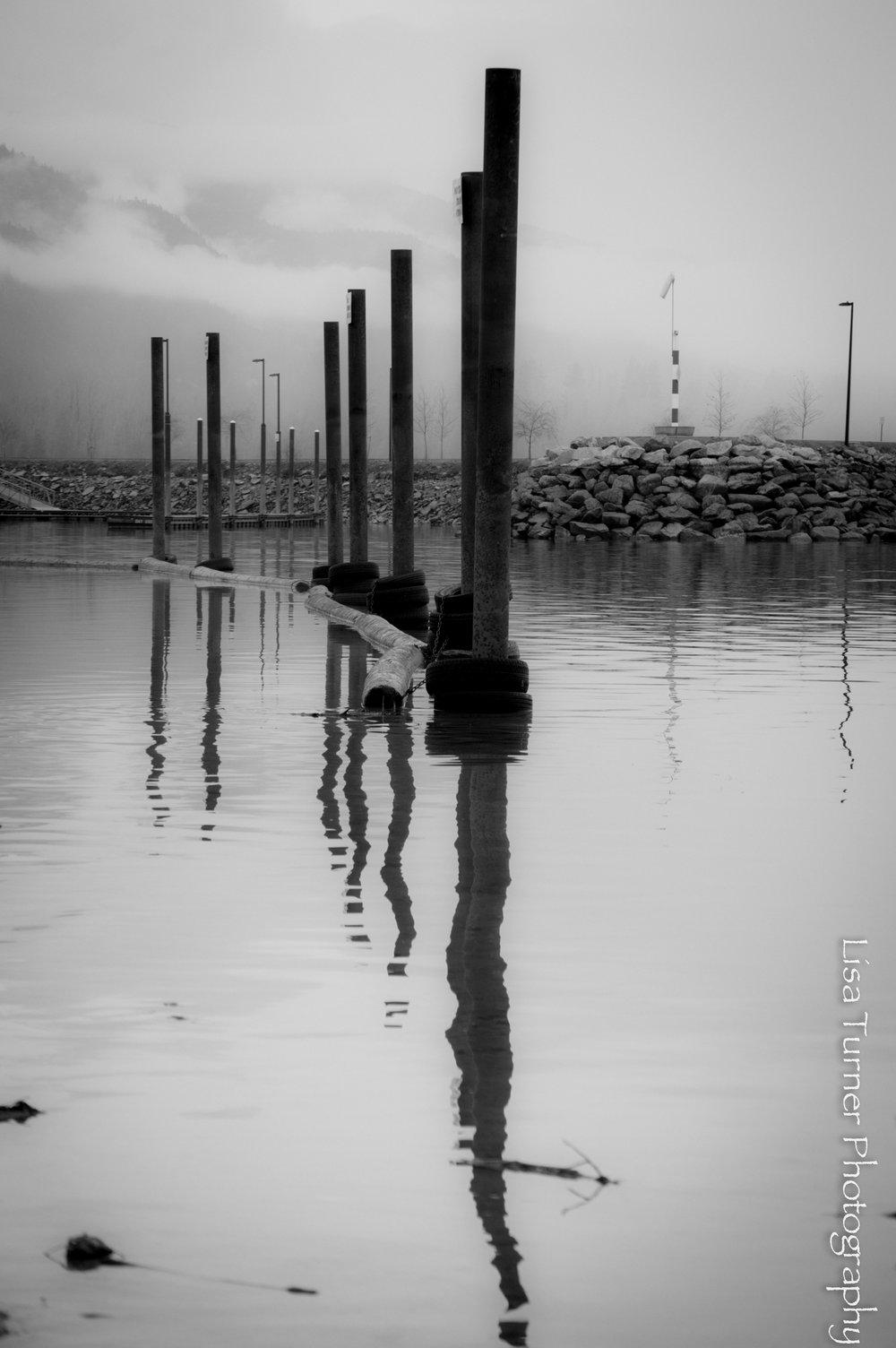 pilings-0155.jpg