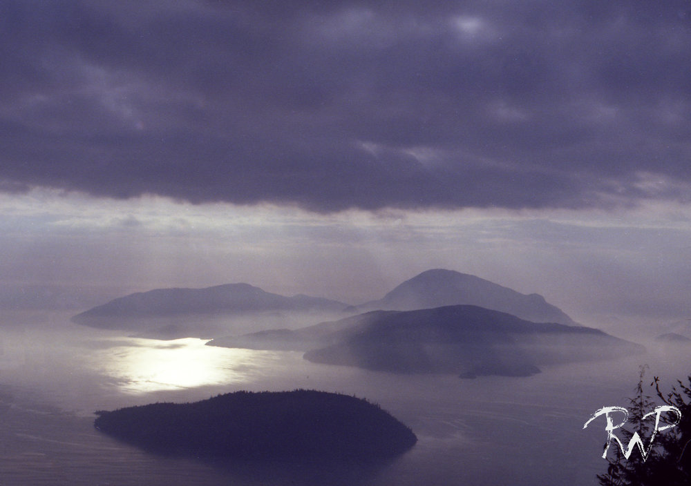 purple island copy.jpg