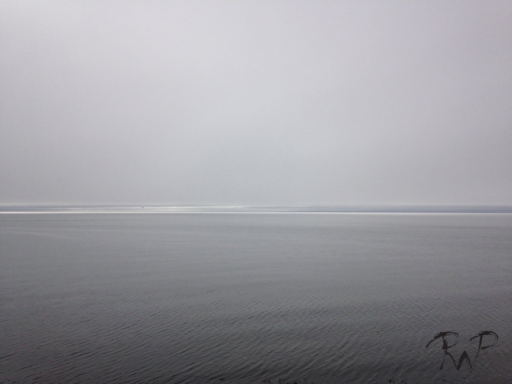 horizon 5.jpg