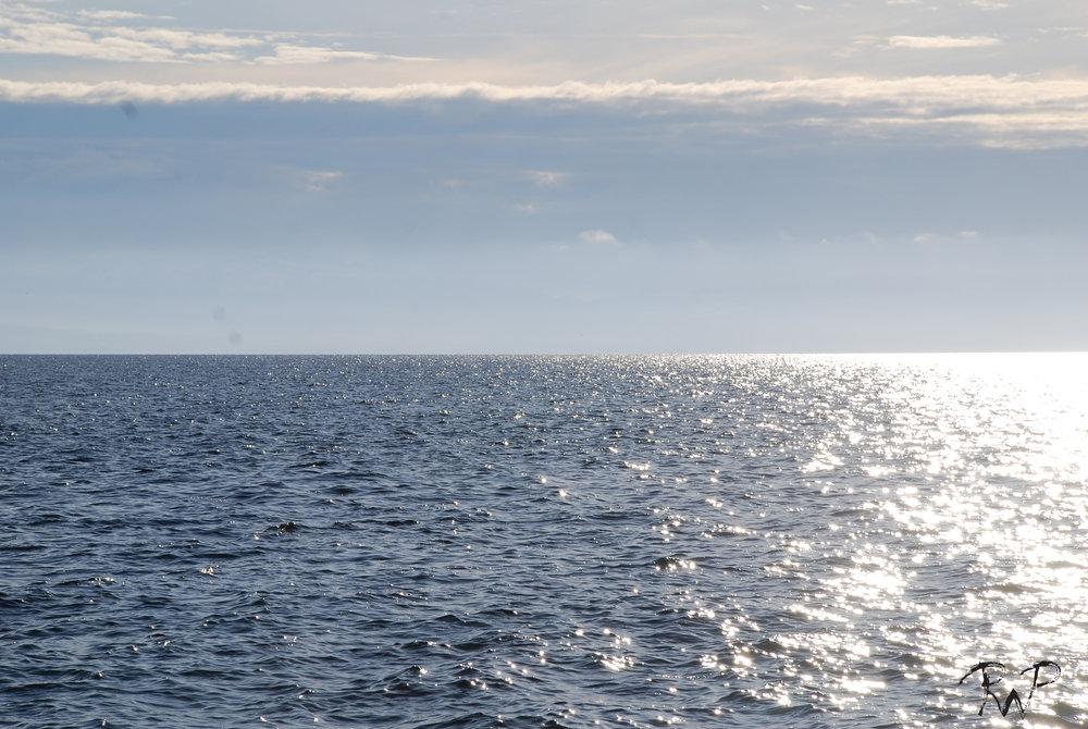 horizon 1.jpg
