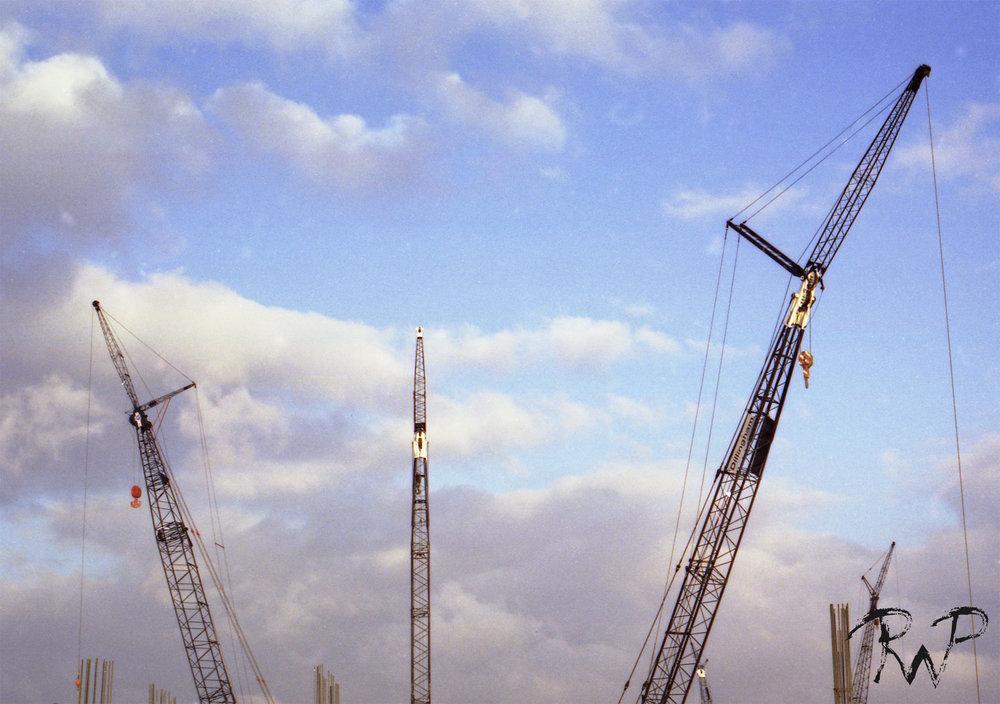 cranes 2.jpg