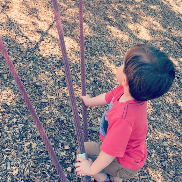 Why do we rotate parks? Each park has a different set of equipment. I notice Grey taking new risks and achieving climbs that he didn't previously attempt. Go ahead, try a new park this weekend.