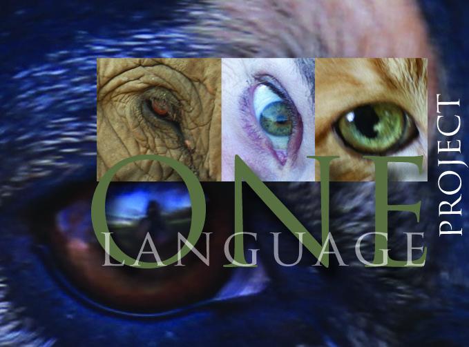 Logo  © Miranda Loud