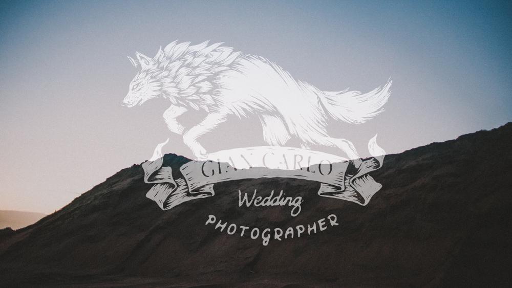 desert-portrait-session-pictures-florida-wedding-photographer-logo-01-01.jpg