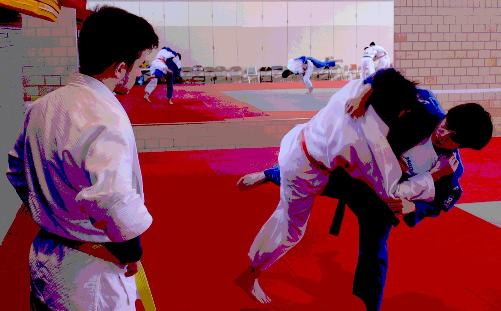 Judo Throw Solarize.jpg