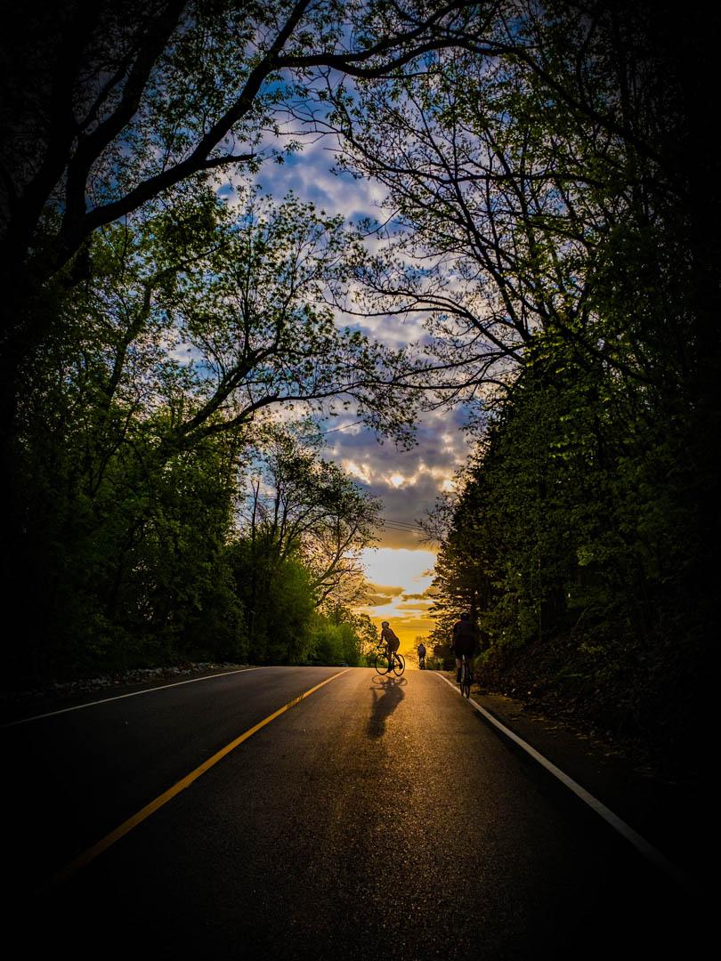 Morning Rides-30.jpg